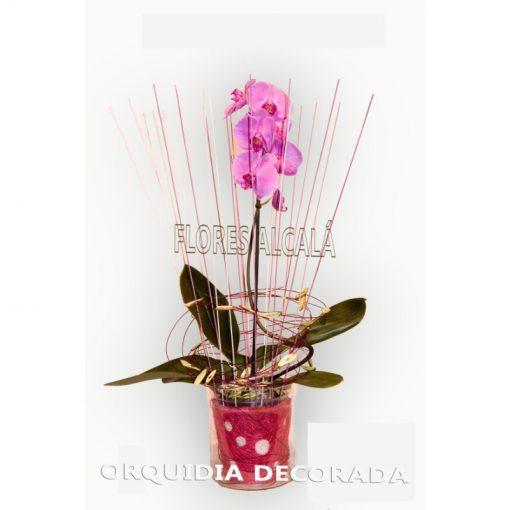 Orquidea Decorada con elementos Secos